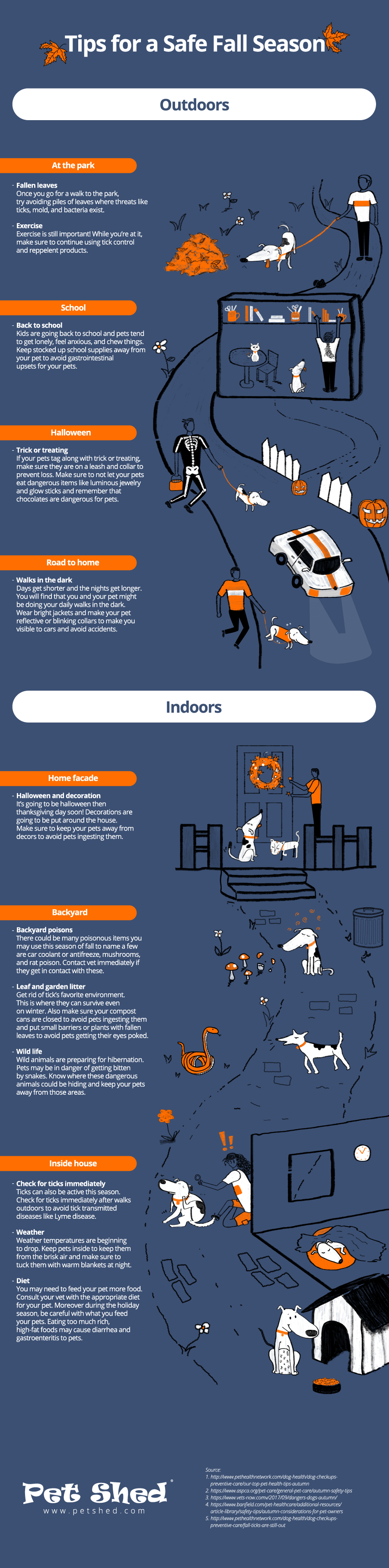 Tips for a Safe Fall Season - Infographic