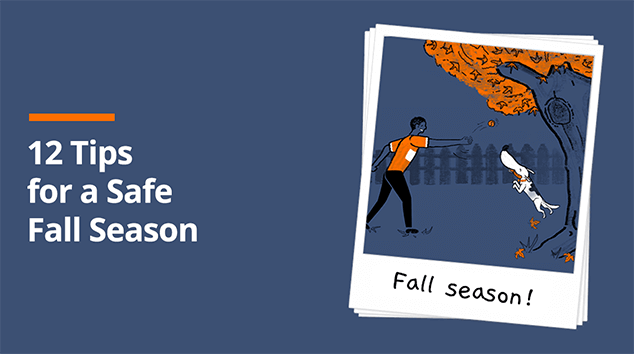 Tips for a Safe Fall Season