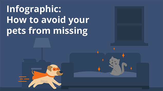 Infographic: How to avoid your pets from missing