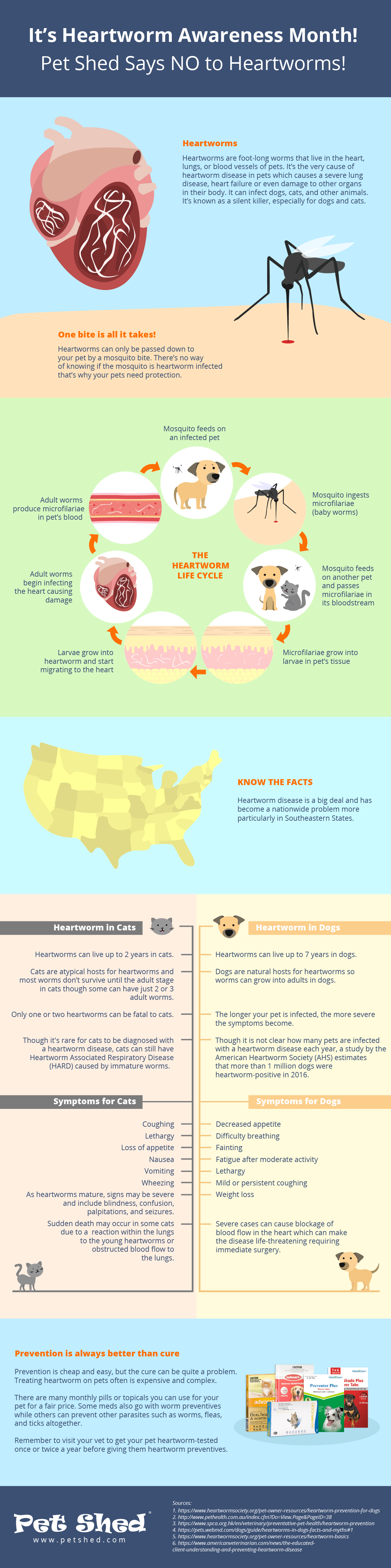 Pet Shed Says NO To Heartworm Disease Infographic