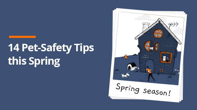 14 Pet-Safety Tips to Remember During Spring Season
