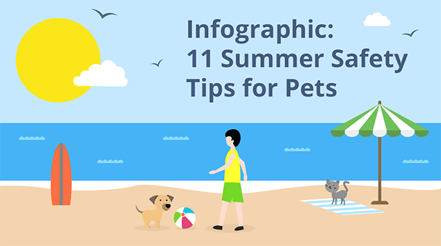 Infographic: 11 Summer Safety Tips for Pets