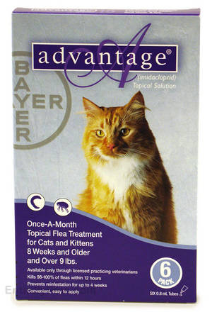 Advantage for cats - right here at Pet Shed