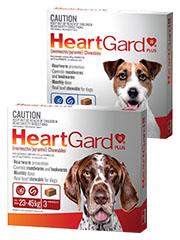 Heartgard+Plus+Chewables