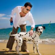 Safe dog walking
