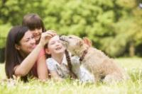 Dog Treats at Easter